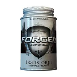 Transform Forged - Post Cycle